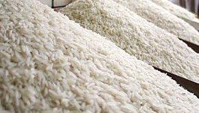 پخش برنج عمده