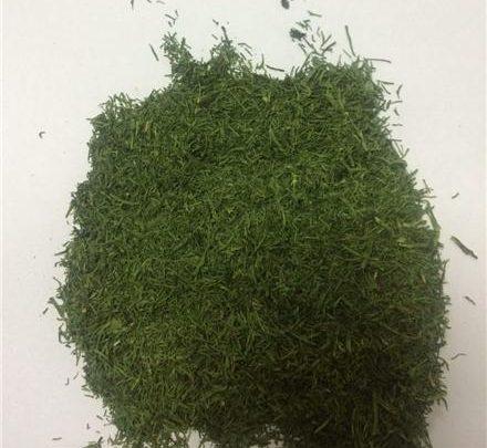 قیمت سبزی خشک شیراز