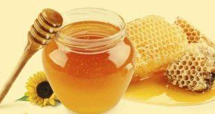 برداشت عسل طبیعی