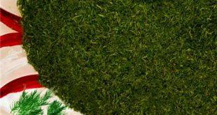 سبزی خشک شیراز