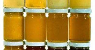 عرضه مستقیم عسل
