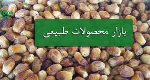 خرمای زاهدی خوزستان